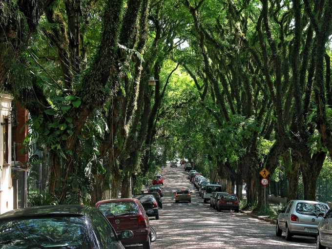 Rua_Gonçalo_de_Carvalho